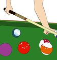 A game of billiards vector image