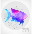Abstract polygonal fish vector image