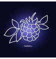 Blackberry in the Contours vector image vector image