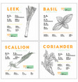nutrition facts of leek basil scallion and vector image vector image