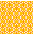 Octagon Pattern vector image vector image