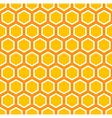 octagon pattern vector image