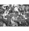 splatter paint texture distress grunge vector image vector image