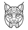 Wildcat lynx mascot head isolated sketch line art vector image vector image