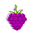 blackberry closeup icon dark purple berry logo vector image vector image