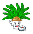 explorer cartoon natural green fern in the forest vector image