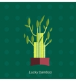 flat of indoor homeplant vector image