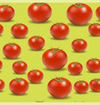 fresh red tomato pattern vector image