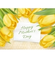Happy Mothers day Typographical Background EPS 10 vector image vector image