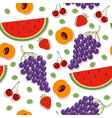 Seamless Patterns with Berries and Fruits vector image vector image