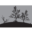Silhouettes of small tree vector image vector image