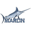 colored of a marlin fish vector image vector image