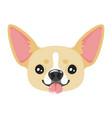 dog pet head icon vector image vector image