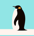 penguin flat style profile vector image