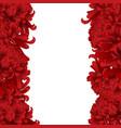 red chrysanthemum flower border vector image vector image