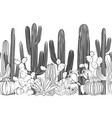 Seamless pattern with cactus wild cactus forest