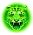 Fair tiger W Green 01 vector image vector image