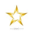 Gold Abstract star on white background vector image vector image