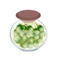 Jar of Pikled Green Eggplants in Malt Vinegar vector image vector image