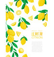 abstract lemon vector image