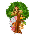 funny animal hiding behind a tree vector image vector image