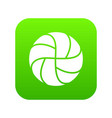 handball icon green vector image