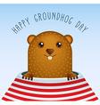 happy groundhog day with groundhog vector image