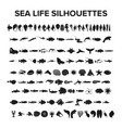 sea life collection vector image