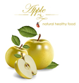 yellow apple vector image vector image