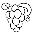 autumn grape icon outline style vector image