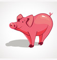 cartoon pink pig with a smile vector image vector image