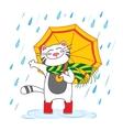 Cat with umbrella under the rain vector image