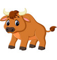 cute baby bull cartoon vector image vector image