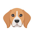 dog pet head icon vector image vector image
