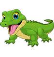 funny crocodile baby cute