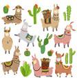 llama cactus chile llamas alpaca and cacti wild vector image