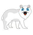 north animal polar beararctic vector image vector image