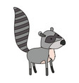 raccoon cartoon colorful silhouette in white vector image
