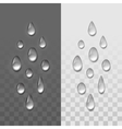 Realistic Water Drops Set Isolated vector image vector image