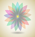 Colorful flower with shadow background vector image