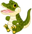 bacrocodile vector image