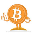 happy bitcoin vector image