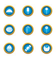 luscious icons set flat style vector image vector image