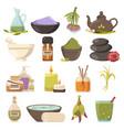 natural cosmetology icons set vector image vector image