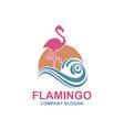 pink flamingo emblem vector image vector image