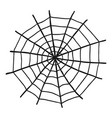 spider web doodle isolated on white vector image