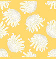 white chrysanthemum flower on yellow background vector image vector image