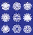 Fluffy white snowflakes for design vector image vector image