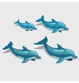 Four cartoon Dolphin character for your design vector image vector image
