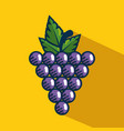 grapes fresh fruit handmade drawn vector image vector image